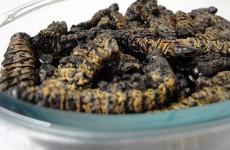 Good old madora (mopani worms)