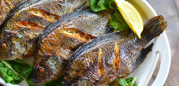 Grilled Garlic & Rosemary Kariba Bream
